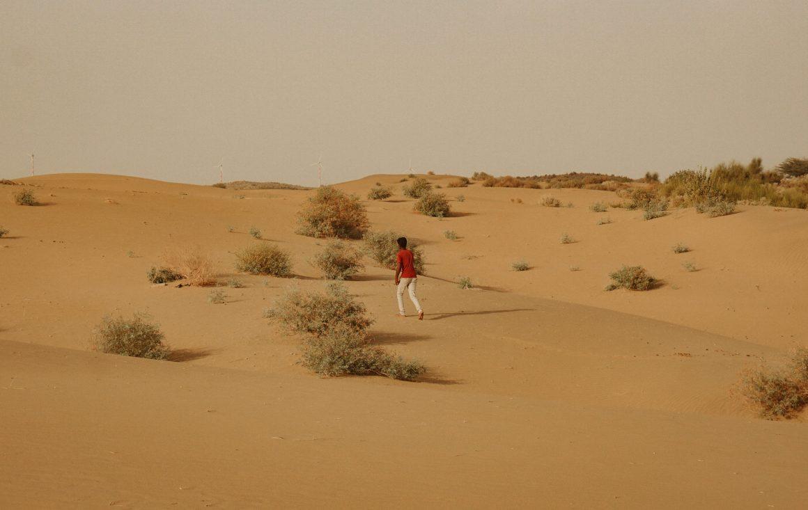 jaislamer desert camel camping opium tea hash